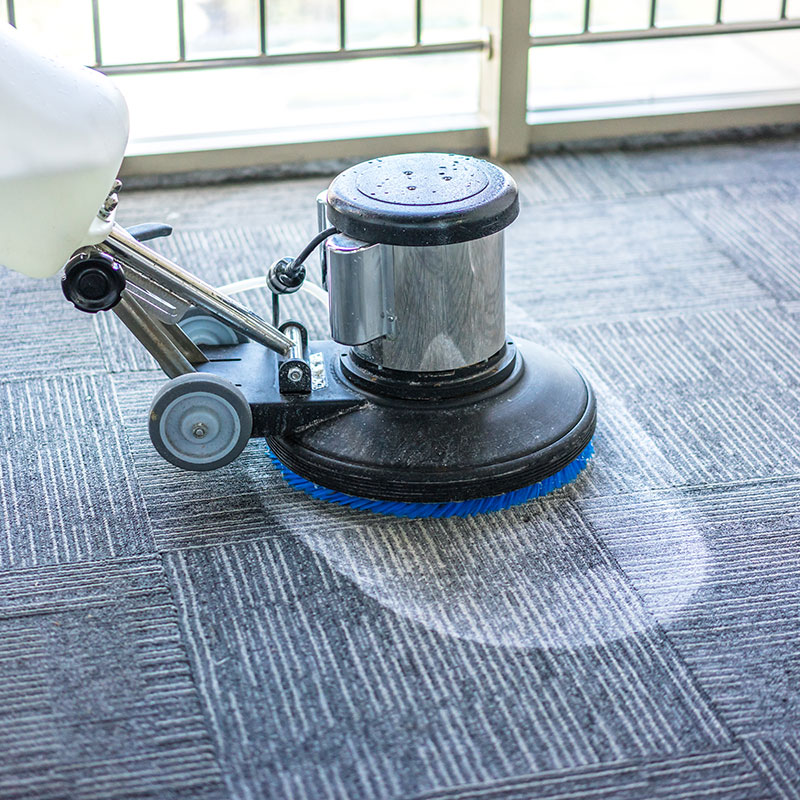 carpet-cleaning-southend-1